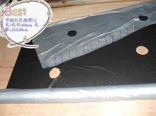 黑银双色反光防虫地膜---农用打孔